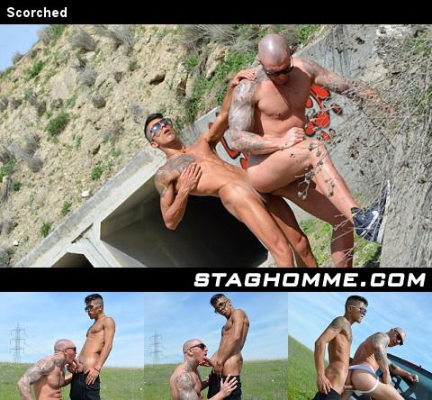 Gay Videos XXX : Delicia!